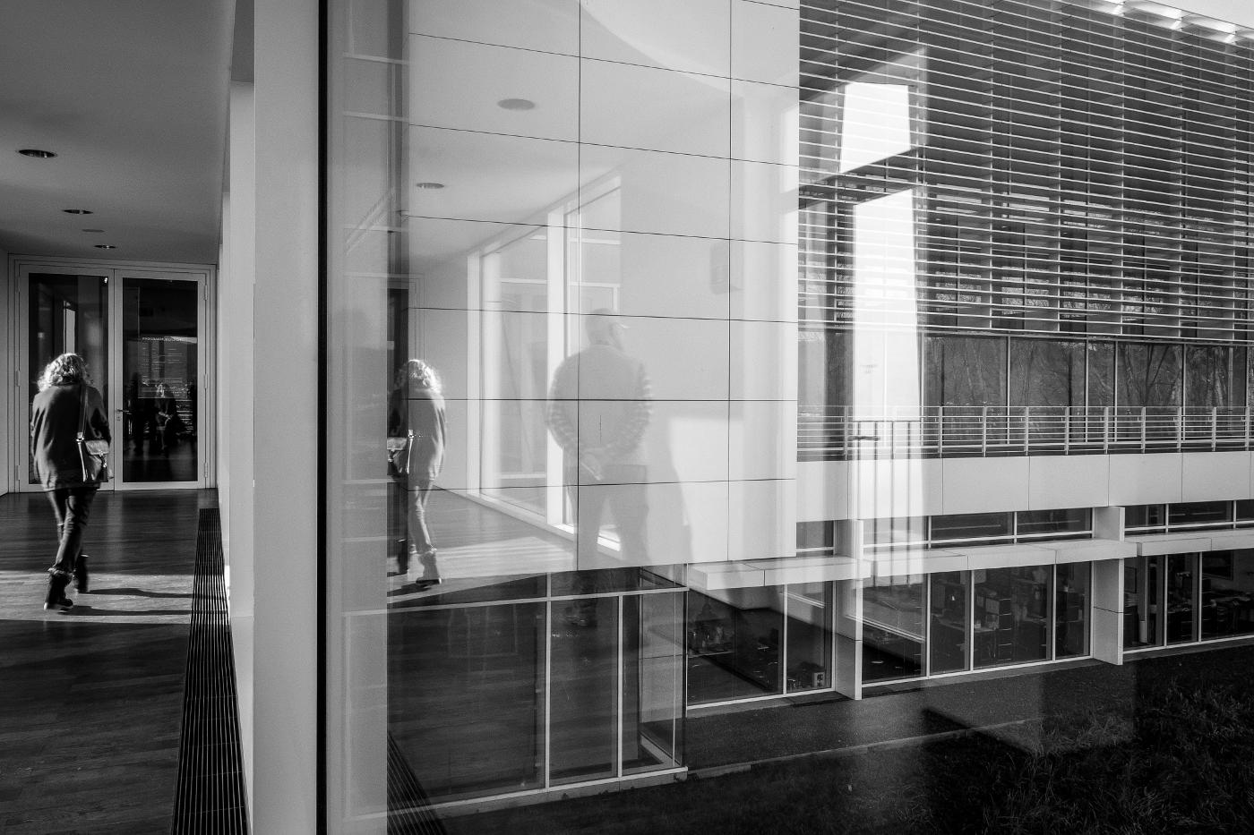 Arp Museum | Neubau 2007 des Architekten Richard Meier  | © wolfgang röser | worobo