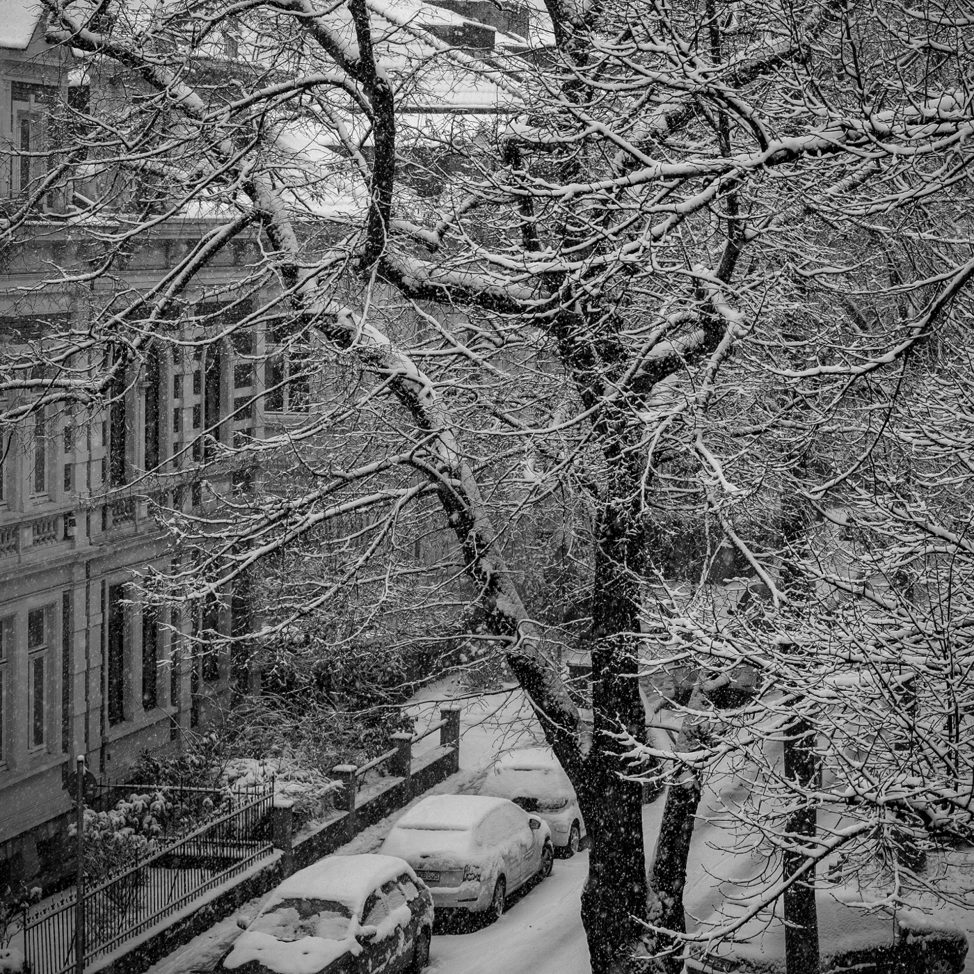 Blick aus dem Fenster | © wolfgang röser | worobo