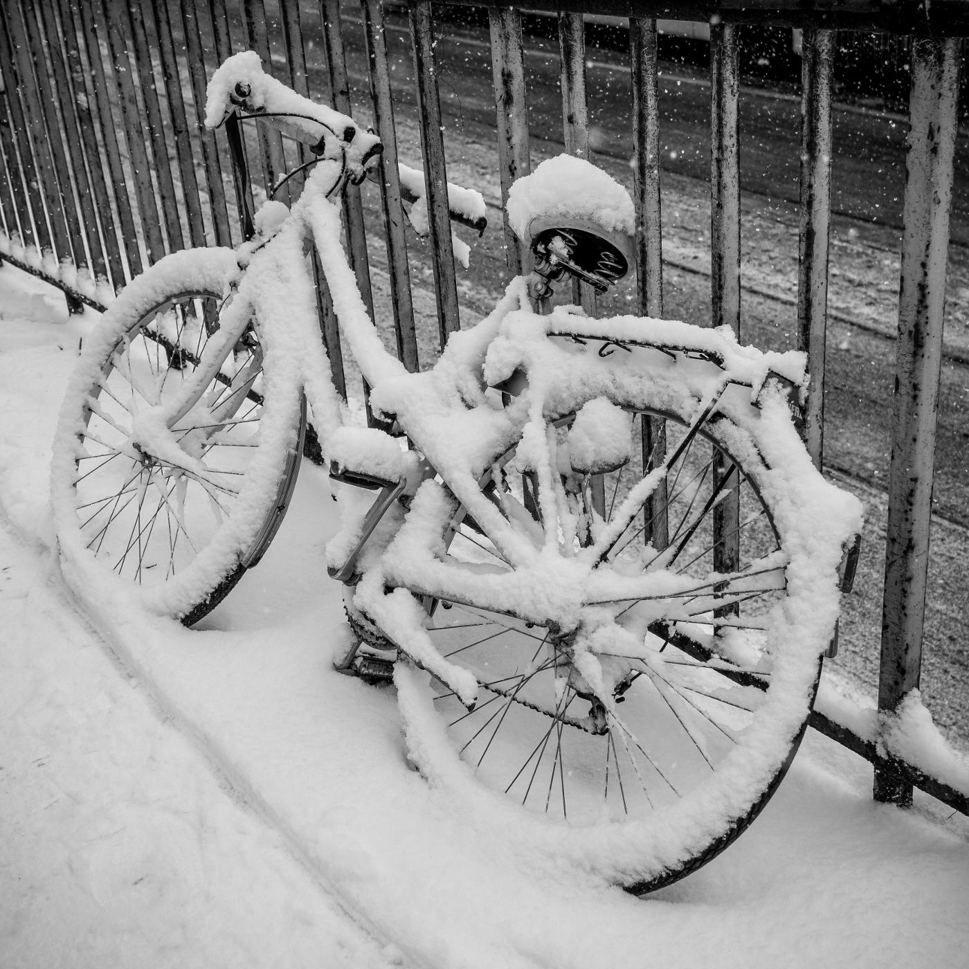 Lost Bike  | © wolfgang röser | worobo