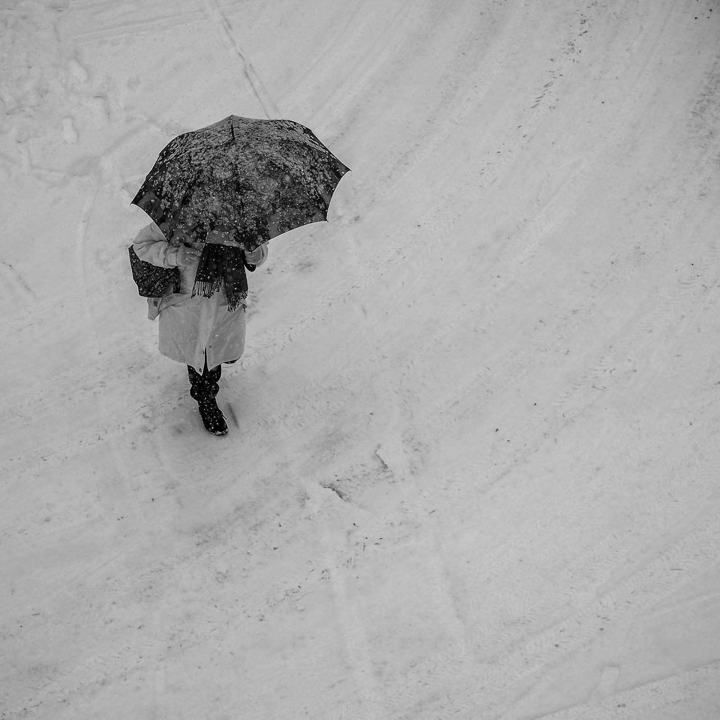 Frau mit  Schirm   | © wolfgang röser | worobo