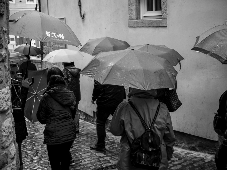 Regentag © | wolfgang röser | worobo